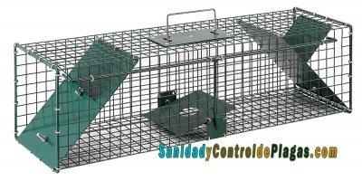 Jaulas ratas 2 puertas